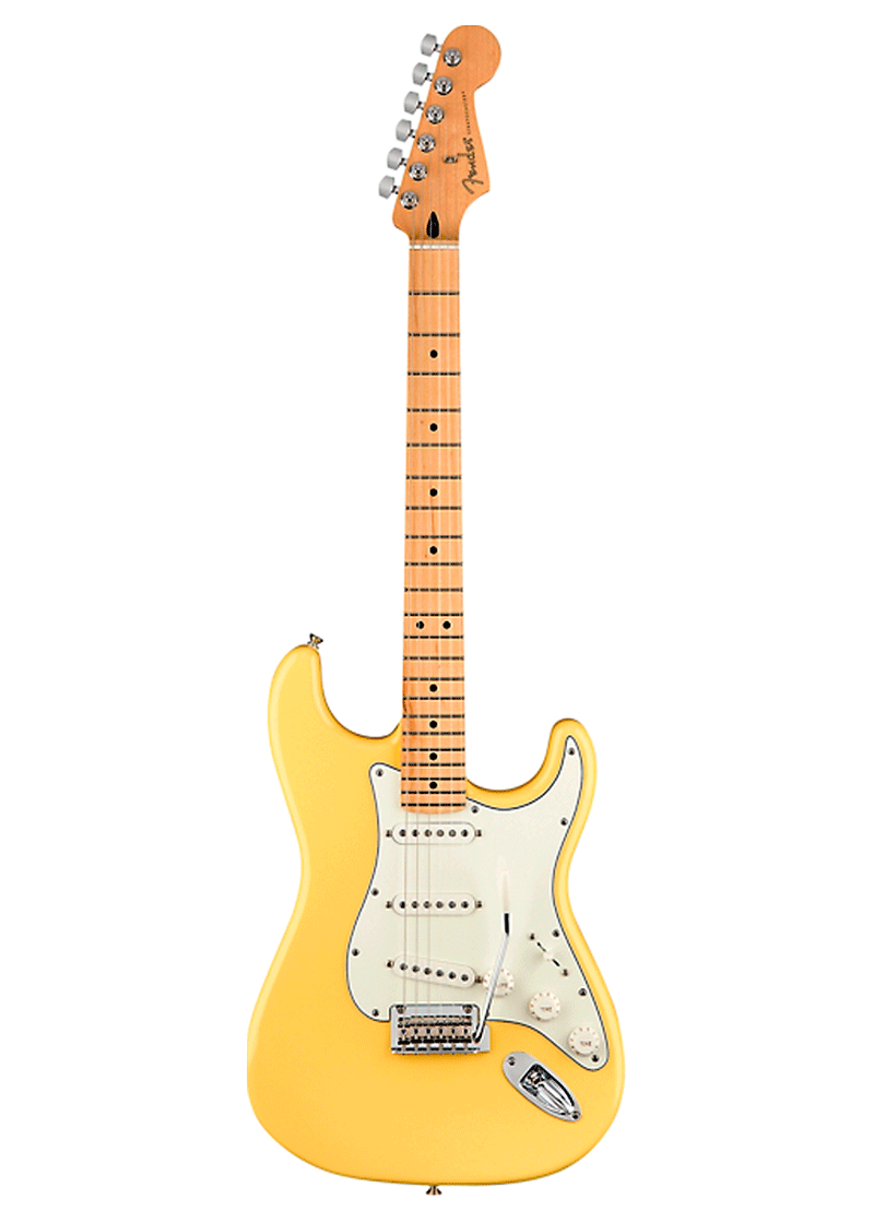 Player Maple 1 https://musicheadstore.com/wp-content/uploads/2021/03/Player-Maple-1.png